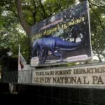 Guindy National Park, Chennai